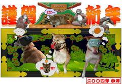 card2004.jpg